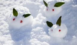冬の大敵・インフルエンザの特徴と予防策