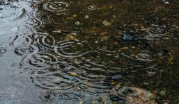 梅雨の時期だからこそ気を付けたい、「フィーリンググッド」効果