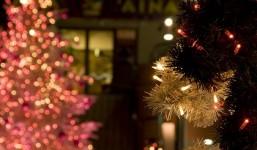 【12月22日】Blue+(ブルータス)クリスマス会